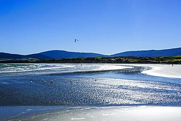 Te Waewae Bay, along the road from Invercargill to Te Anau, South Island, New Zealand, Pacific
