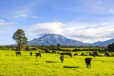 Mount Taranaki, North Island, New Zealand, Pacific