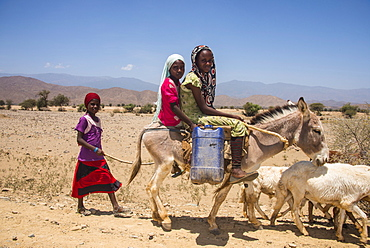 Children riding on a donkey to a waterhole in the lowlands of Eritrea, Africa