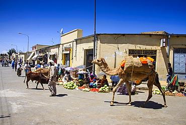 Market in Adi Keyh, Eritrea, Africa