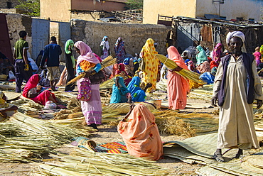 Women selling their goods at the colourful Monday market of Keren, Eritrea, Africa
