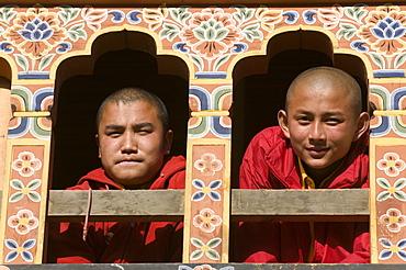Young Buddhist monks at window, Gangte Goempa, Bhutan, Asia