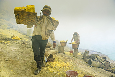 Workers in the sulphur mine of the Ijen Volcano, Java, Indonesia, Southeast Asia, Asia