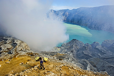 Worker loaded with big pieces of sulphur in front of steam clouds on the Ijen crater lake, Java, Indonesia, Southeast Asia, Asia