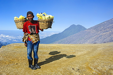 Worker carrying big pieces of sulphur out of the Ijen Volcano, Java, Indonesia, Southeast Asia, Asia