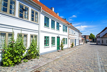 Old precinct of Odense, Funen, Denmark, Scandinavia, Europe