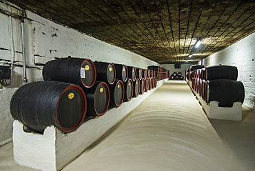 Huge barrels of wine in the cellars of Cricova, one of the largest wineries of the world, Moldova, Europe