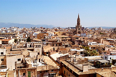 Old town, Gothic district seen from the rooftop of the cathedral, Palma de Mallorca, Majorca, Balearic Islands, Spain