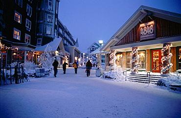 Snowshoe Ski Resort Area, Monongahela National Forest, West Virginia, USA