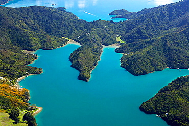 New Zealand, South Island, Marlborough Sounds, Waterfall Bay (L), Mistletoe Bay (R), and Kenepuru Sound (top) _ aerial, 2005