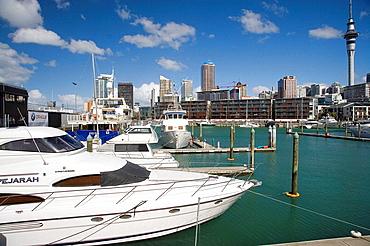 Boats, Skytower, CBD and Viaduct Basin, Auckland, North Island, New Zealand