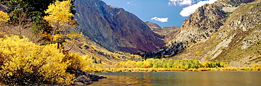 Parker Lake bordered by Willows & Aspens in autumn color w/ Mt, Lewis bkgnd [Populus tremuloides, Salix sp.], Ansel Adams Wilderness, Parker Lake, CA.