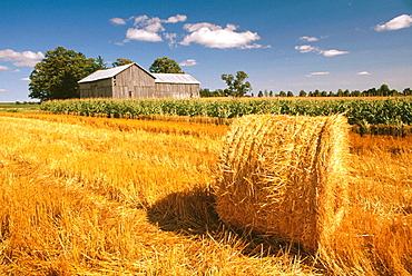 Bale and barn in summer, Near Palmerston, Ontario, Canada