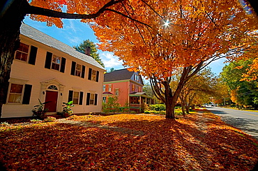 USA, Vermont, Windsor