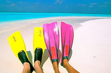 Maldives islands - 817-113138