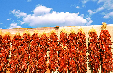 Strings of chilis drying up in a wall, Taos, New Mexico, USA