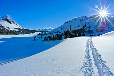 Sun flair over ski tracks on the Tioga Pass road (Highway 120) in winter, Inyo National Forest, Sierra Nevada Mountains, California