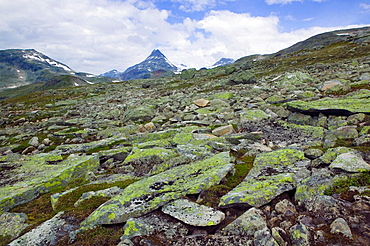 Peak Uranostind, Jotunheimen National Park, Oppland, Norway