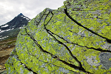 Cracks in rock eroded by extreme cold temperature, Jotunheimen National Park, Oppland, Norway, Falketind (2067 mt) in background