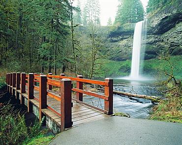 Silver Falls State Park, Oregon, USA