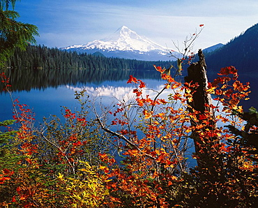 Mount Hood from Lost Lake, Mount Hood National Forest, Oregon, USA