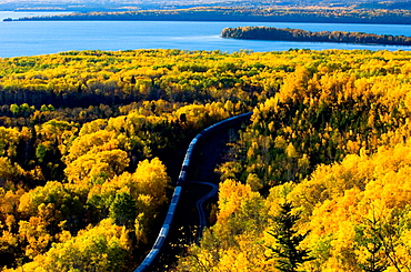 Aspen forest in autumn colour overlooking Lake Superior with rail line and train, Rossport, Ontario