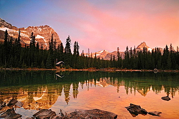 Cathedral Mountain and Odaray Mtn reflected in Lake O'Hara at dawn