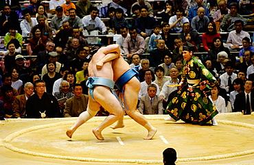 Sumo wrestling, Osaka, Japan