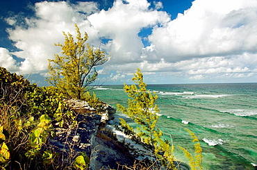 The rugged shoreline of Grand Turk in the Turks and Caicos Islands, British Overseas Territories