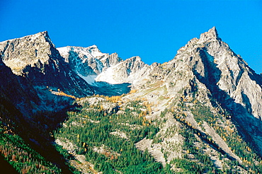 Trapper Peak and larch trees in autumn, Bitterroot Mountains, Montana, USA