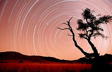 Star trails, Namib-Naukluft Park, Namib Desert, Namibia