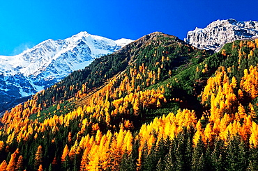 Mount Ortler (3905 m), Solda (Sulden), Stelvio National Park, Trentino-Alto Adige, Italy