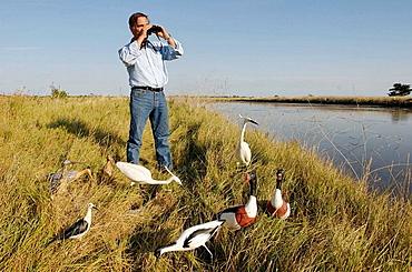 Allain Bougrain-Dubourg, president of the LPO (Bird protection association), Papier-mache birds by Gregoire Bonin, Lilleau des Niges bird sanctuary, Fier d'Ars, Island of Re, Charente-Maritime, France
