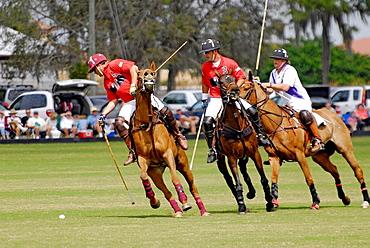 Polo match Sarasota Florida, USA