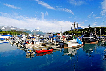 Valdez Boat Harbor Port Valdez Prince William Sound fishing boats Alaska AK United States U S Chugach Mountains