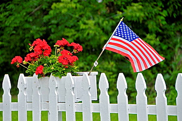 American USA flag in a flower box