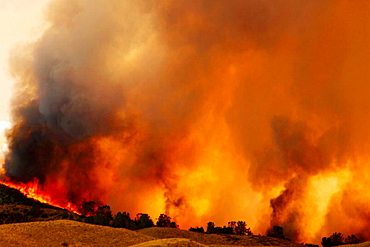 Lake Hughes fire which started on July 12, 2004, California, USA