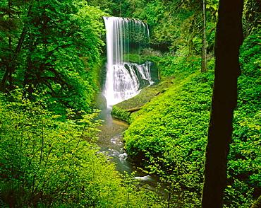Silver Falls, Middle North, Oregon, USA