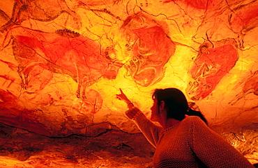 Bisons in Altamiras reproduction cave (Neo Cave), Altamira museum, Santillana del Mar, Spain