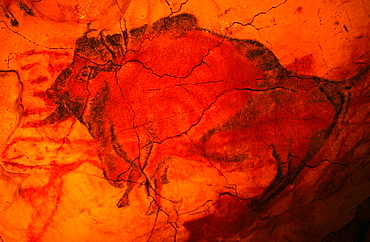 Bisons at ALTAMIRA NEO CAVE MUSEUM - Santillana del Mar - Cantabria - Spain
