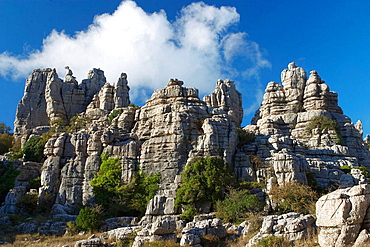 Erosion working on Jurassic limestones, This is the biggest Karstic landscape in Europe, The origin is the sea floor dating from 150 million years ago, Natural park of Torcal de Antequera, Antequera, Malaga province, Andalucia, Spain