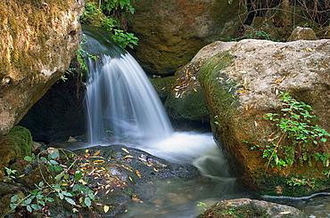 Majaceite river, Sierra de Grazalema Natural Park, Cadiz province, Andalusia, Spain