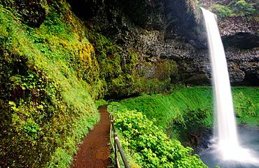 South Silver Falls State Park, Oregon, USA