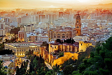 In front the moorish Alcazaba, and the cathedral, Malaga province, Spain. - 817-166499