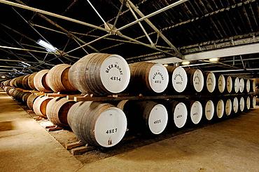 Glen Moray Whisky distillery, Elgin, Moray, Aberdeenshire, Scotland, U.K.