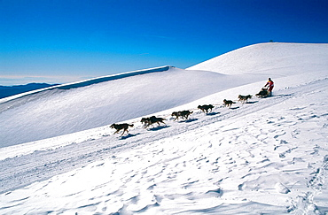 Pirena, Sled dog race in the Catalan Pyrenees going through Spain, Andorra and France.