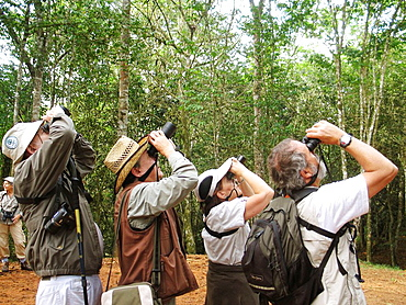 Birdwatching at Guatopo National Park, Venezuela
