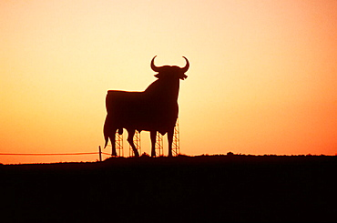 Bull silhouette, typical advertising of Spanish brandy Osborne, Navarre, Spain