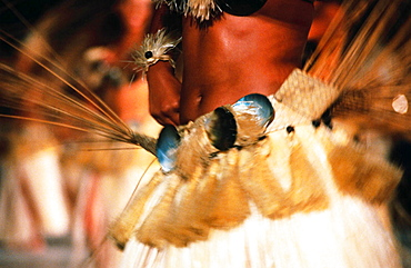 Close up of a female dancer waist during a tamure dance, Tahiti, French Polynesia