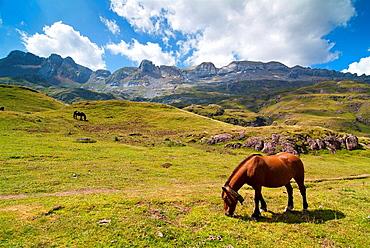 Aguas Tuertas, Pirineos, Huesca, Aragon, Espana